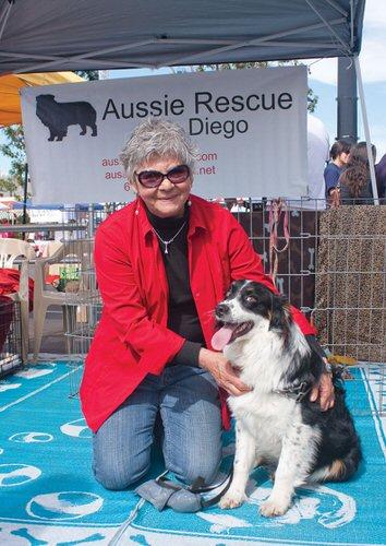 Becky Rie AusSie Rescue San Diego